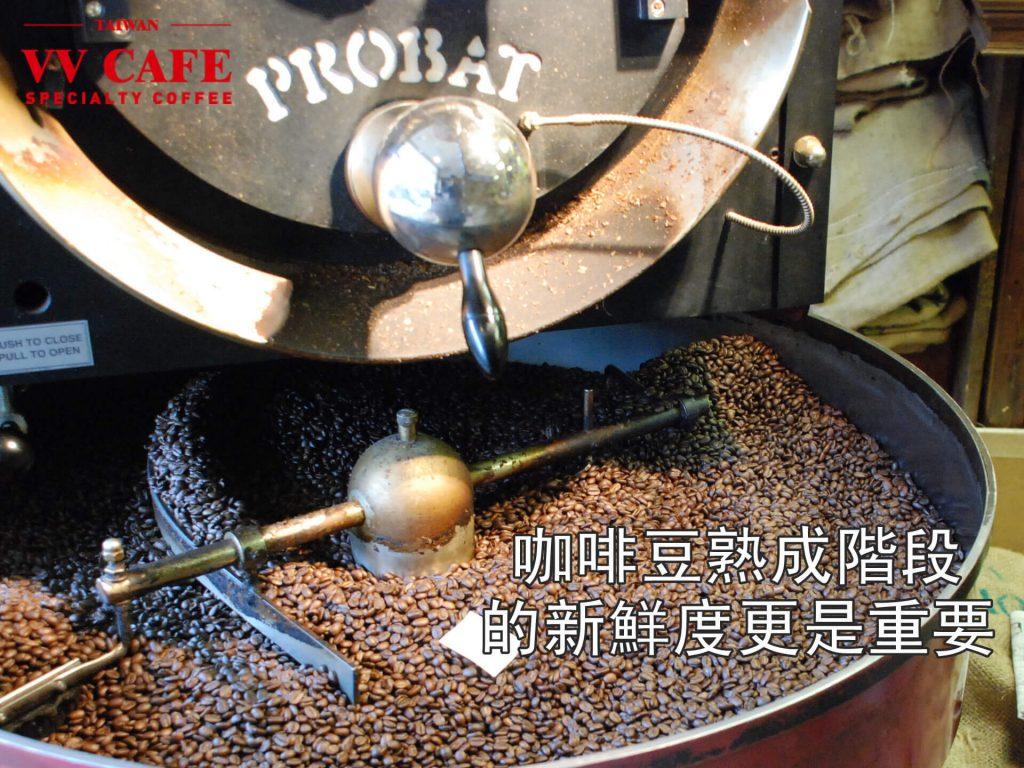 咖啡豆熟成階段的新鮮度