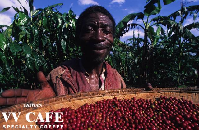 公平貿易(公平交易)咖啡coffee-farmer
