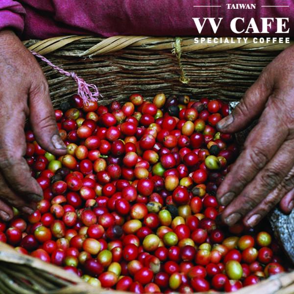 公平貿易(公平交易)咖啡有意義嗎