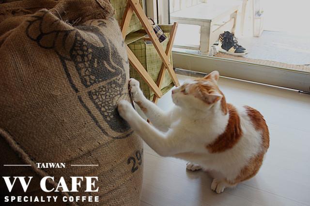 咖啡實驗室大寶
