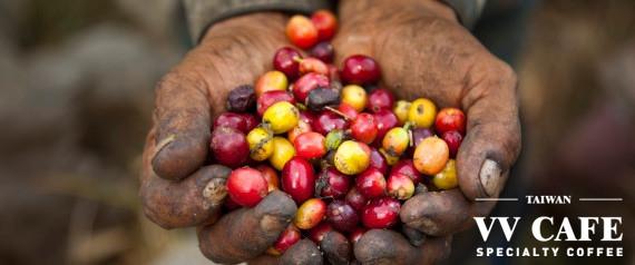 公平貿易(公平交易)咖啡