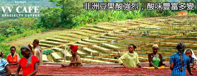 非洲豆果酸强烈