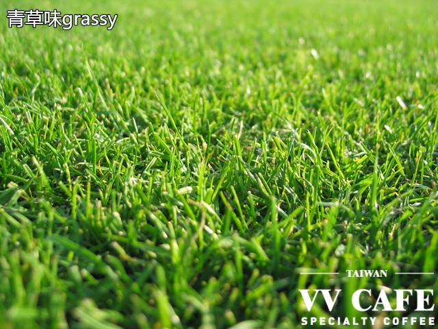 青草味grassy
