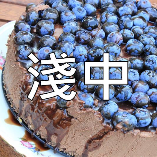 04淺中烘焙_副本